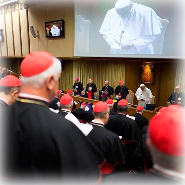 Il Sinodo non è uno scontro