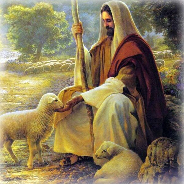 IV Domenica di Pasqua