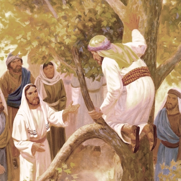 Il Figlio dell'uomo è venuto a cercare e a salvare ciò che era perduto