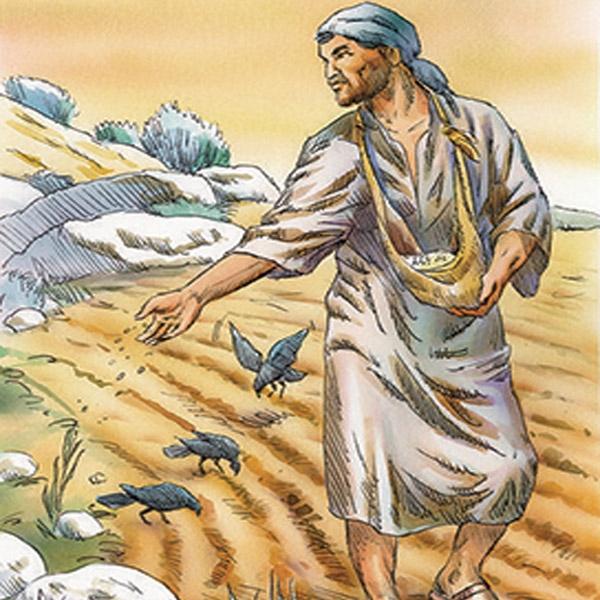 «Ecco, il seminatore uscì a seminare…»
