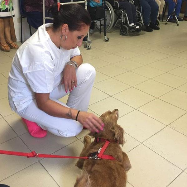 Savignano Irpino – Animali terapeutici al Centro Don Orione