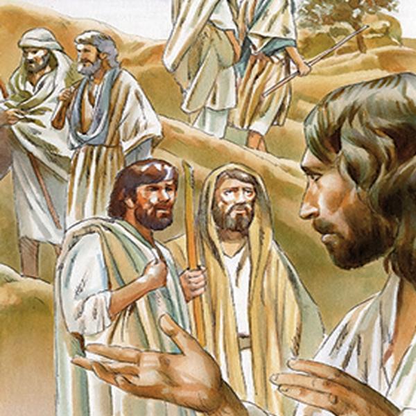 XV Domenica del tempo ordinario – Chiamati e mandati per annunciare il vangelo