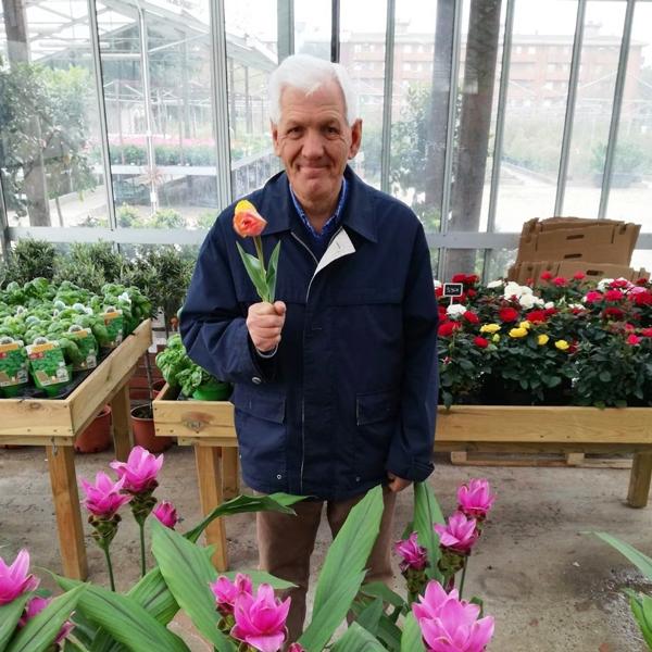 Seregno – I tulipani delle meraviglie