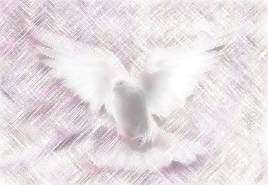 VI Domenica di Pasqua – La pace di Cristo nello Spirito