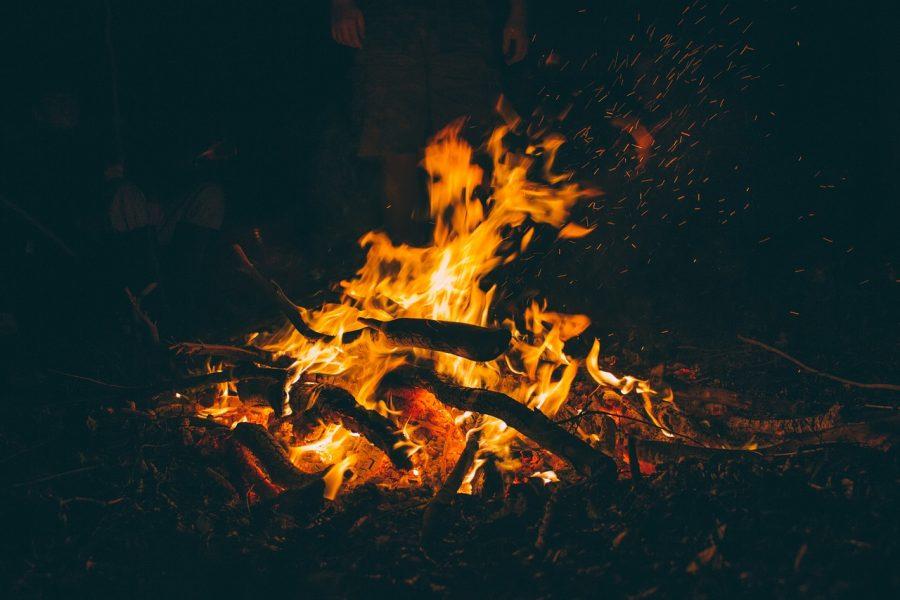 XX Domenica del Tempo Ordinario – Un fuoco d'amore