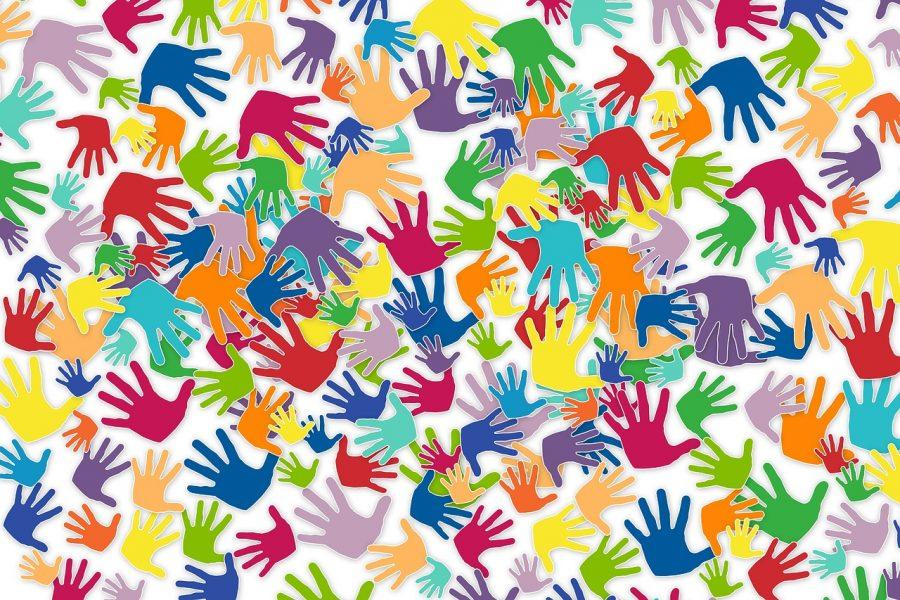 Bilancio sociale – Le nuove linee guida per il Terzo Settore
